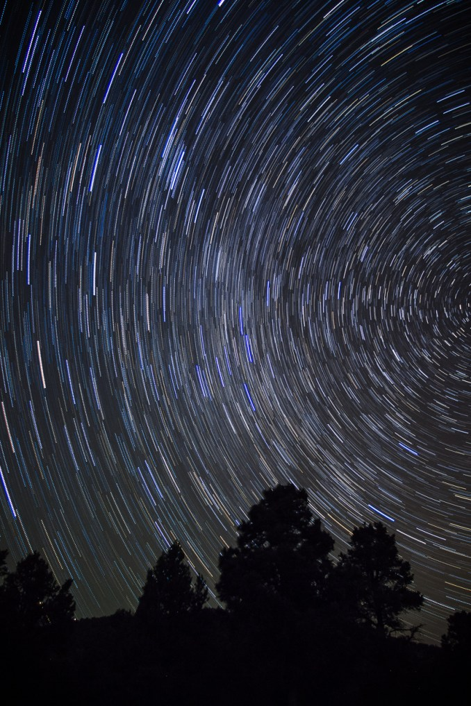 Photographers of Las Vegas - Concept Photography - Star Trails night photography against tree line long exposure