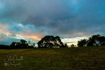Dawn over Prospect Hill Reserve-7-2