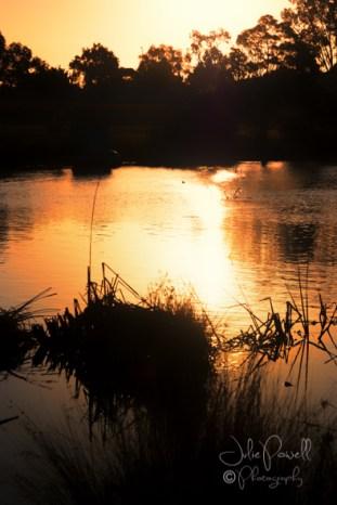 Autumn Sunset--3