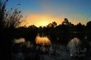 Autumn Sunset--8