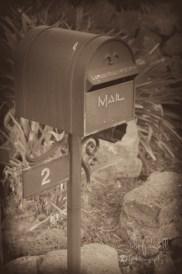 Letterboxes-2-8