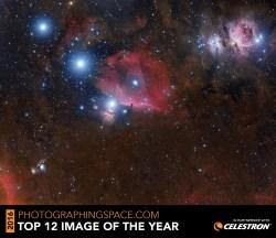Jose Mtanous top 12