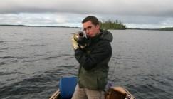 Walleye (Photo by Peter Greff)