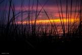 Beach O'Pines, Lake Huron, Canada
