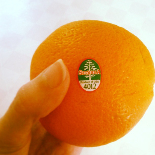 a photo of a hand holding an orange with a sequoia sticker on it
