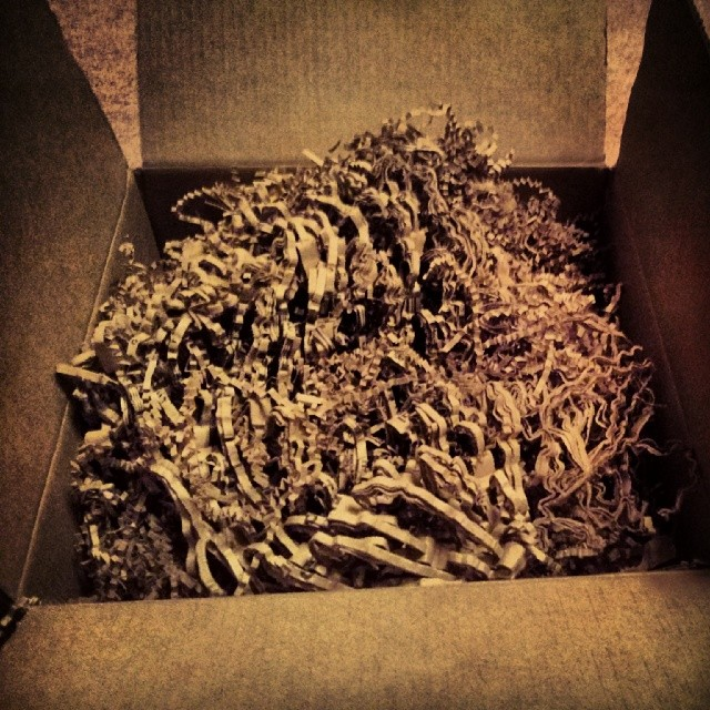 a photo of some shredded paper in a cardboard box