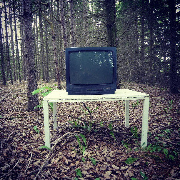 a photo of a television sitting on a table in the forest