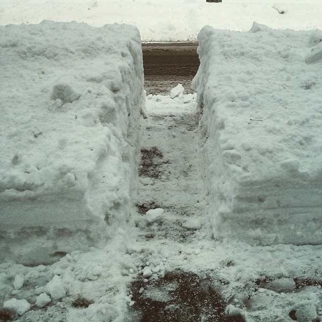 a photo of a path dug through a snowbank