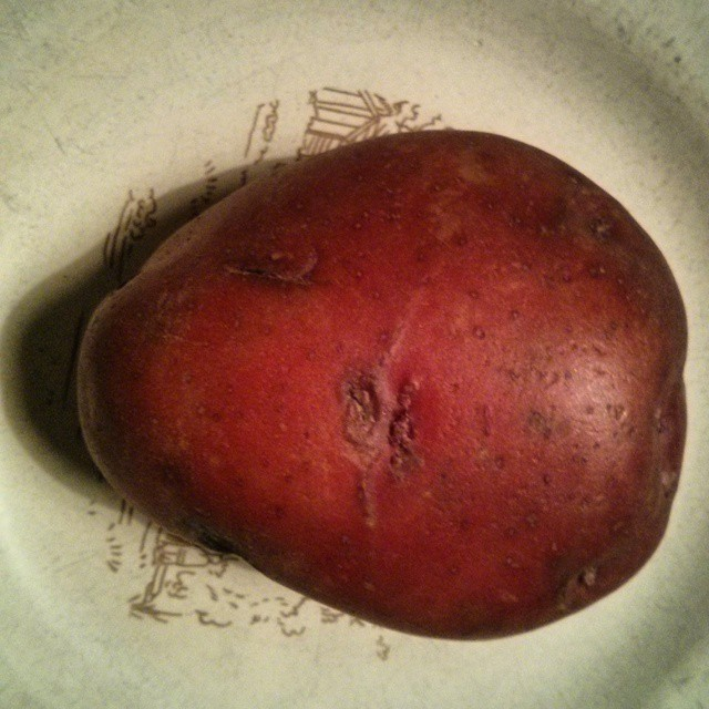 a photo of a potato closeup on a plate