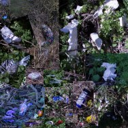 Spring is a time when many people start to use the river again - seeing the ducks and feeding the swans. Walking after winter. On March 22nd 2015 I photographed all the litter left by this sudden burst of activity - like flowers suddenly in bloom.