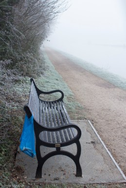 Bench2_common_2015_01-1