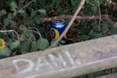 Bench 3: Rithy City 7