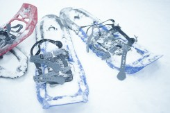 Image of snow covered blue and red snowshoes sitting in a drift on Dog Mountain, Vancouver BC