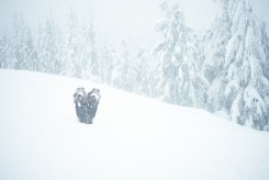 Pair of snowshoes in a snow drift at the lookout on Dog Mountain in Vancouver, BC