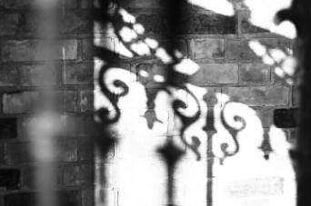 Shadow - Copyright Toronto Photographer Ardean Peters