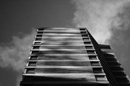 looking up - copyright Toronto Photographer Ardean Peters