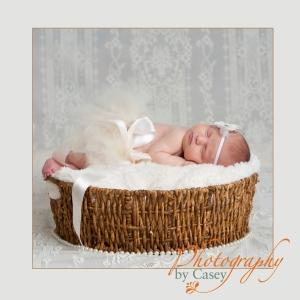 photography of newborn baby girl in tutu sleeping in basket