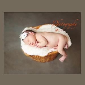 Sleeping Newborn Baby in Tree Stump