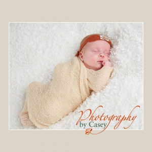 Newborn Baby Photography Wrentham MA