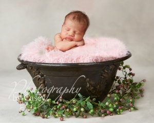 Newborn Photographer Wrentham MA