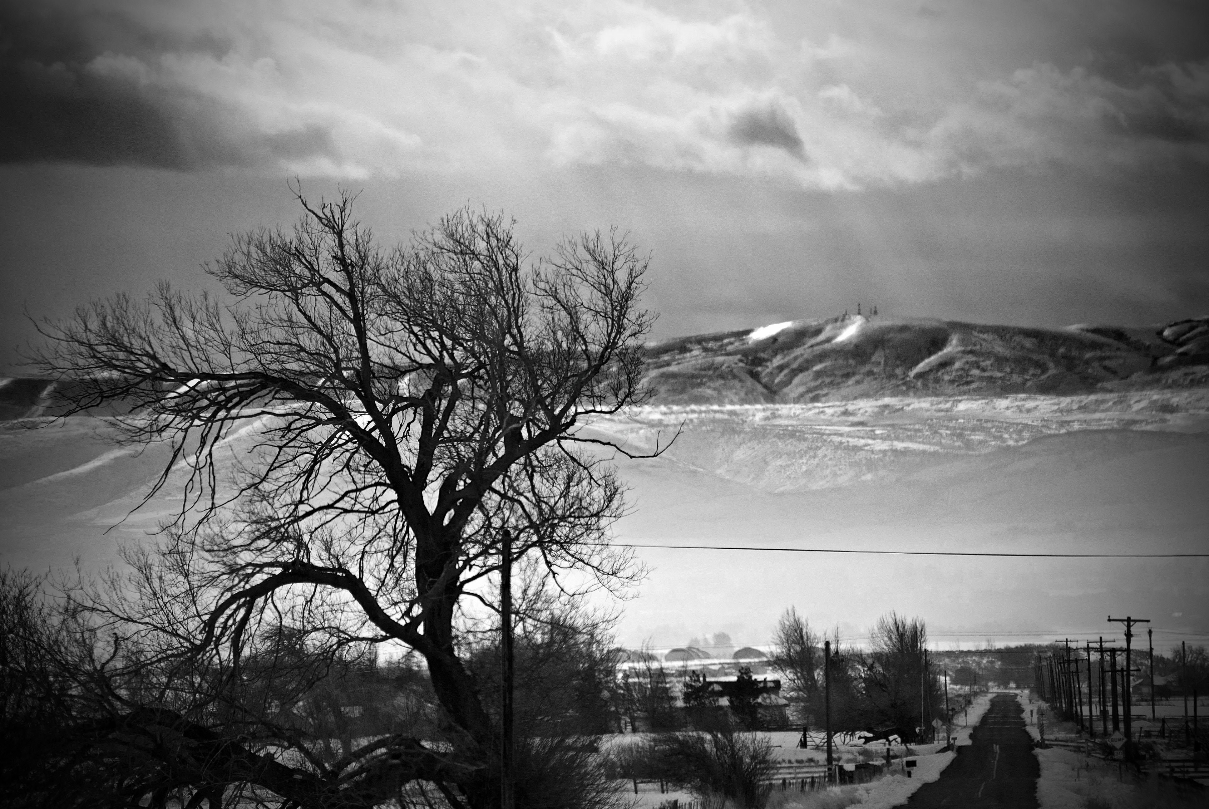black and white photographybycjp