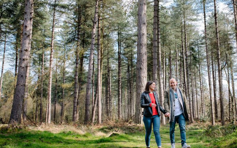 A couple walk through the trees on a pre wedding shoot at Delamere Forest
