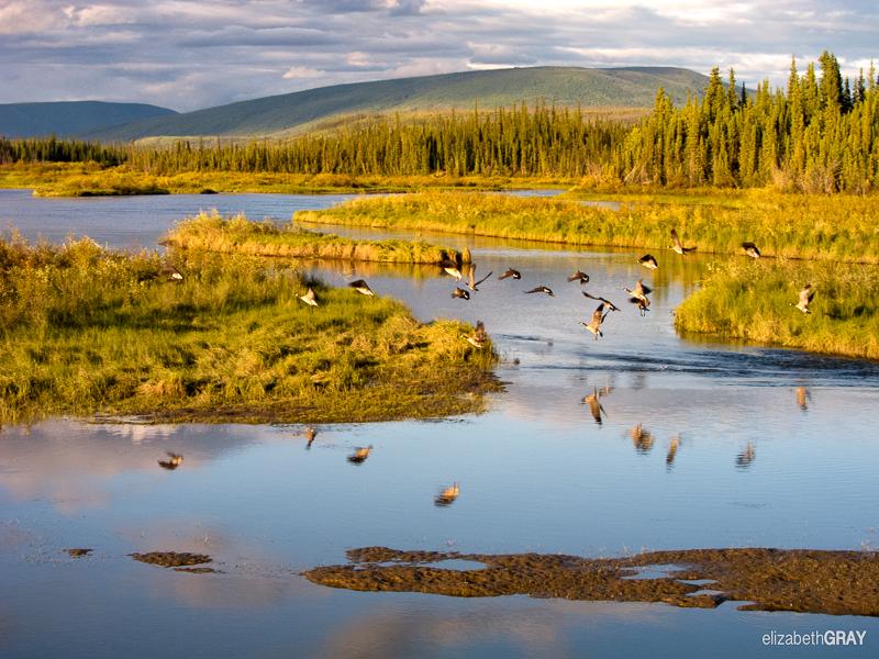 Yukon – August 2012