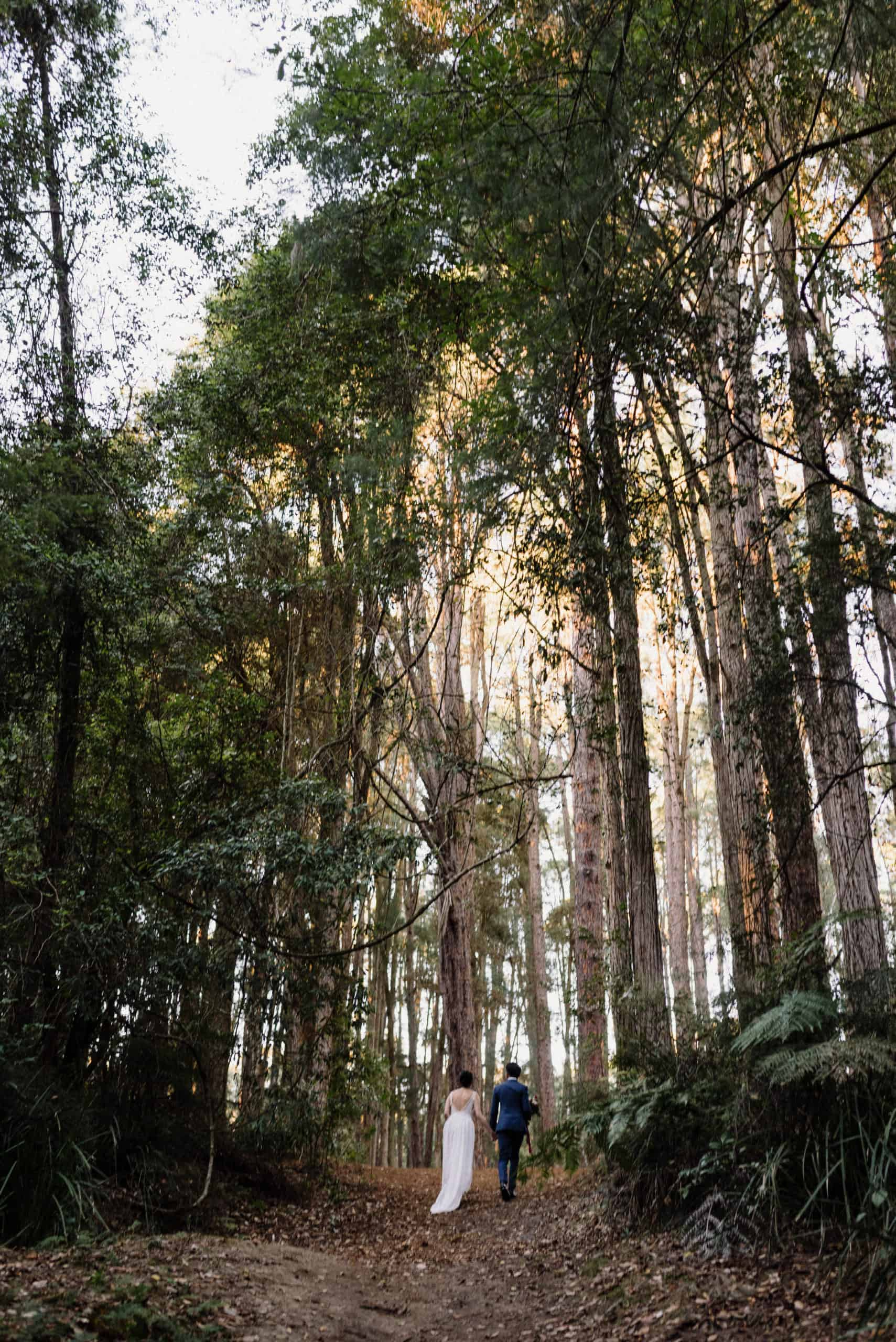 Bride and groom trek through pine forest to the elopement ceremony location