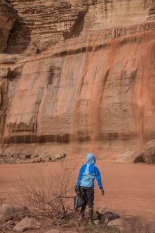 3-5-17-grand-falls-clean-up-terri-attridge-9275