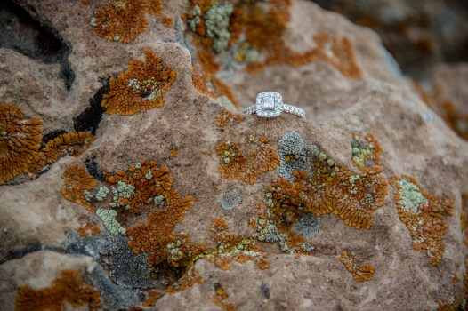 Engagement ring in kaibab limestone with lichen at the South Rim