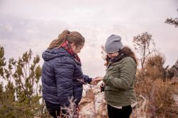 Snowy Grand Canyon Engagement in action
