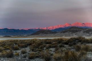 1.8.19 LR Death Valley Trip photography by Terri Attridge-113