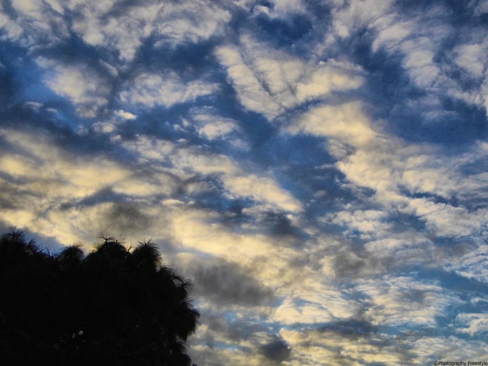 The Open Sky  (3/3)