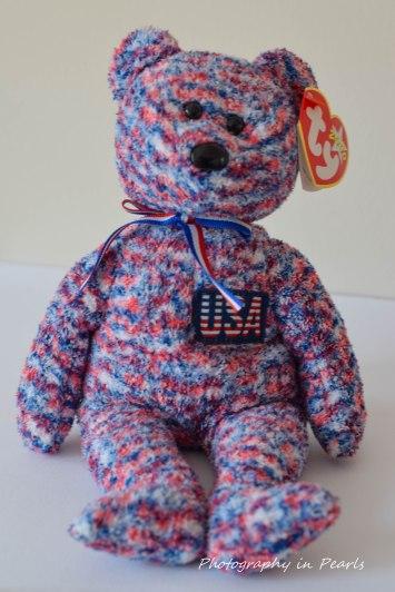 USA Bear 1