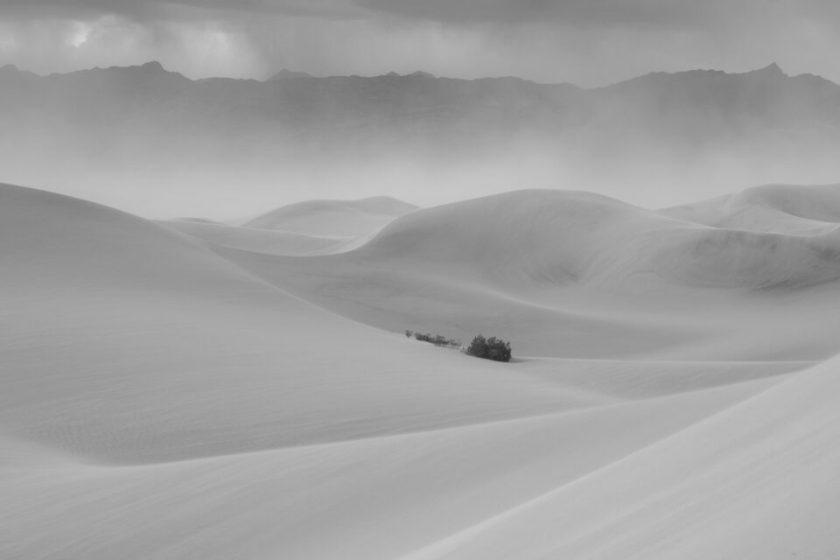 Middle Gray Landscape