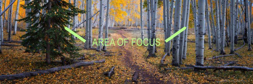 Pano-Middleground-Focus