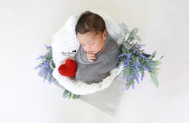 Newborn studio portraits and newborn photography sessions