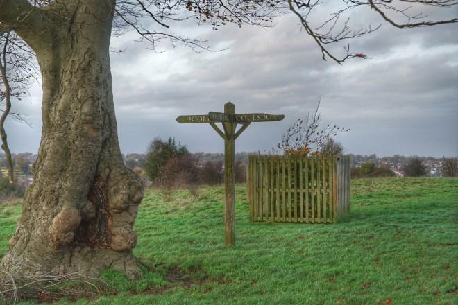 Four Way Sign