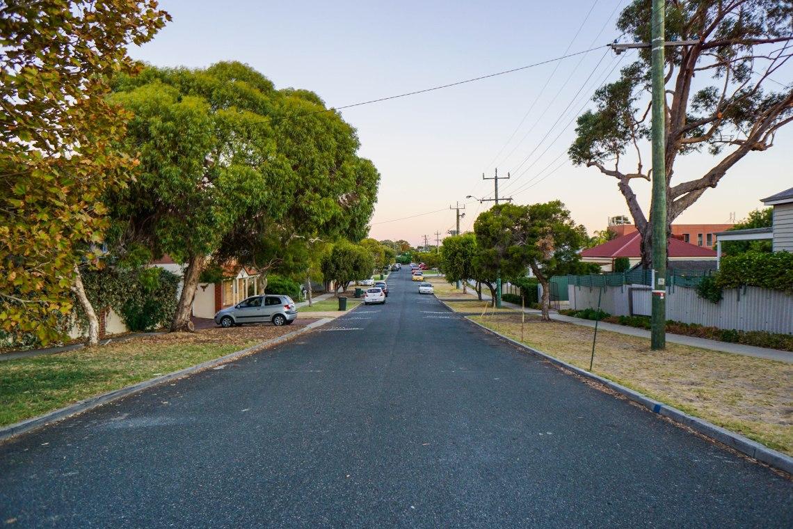 Victoria Park leafy tree lined street (1 of 1)