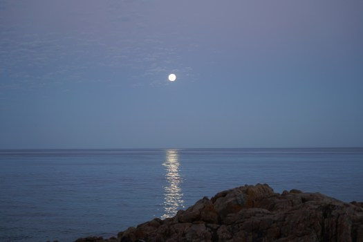 supermoondunsborough2016