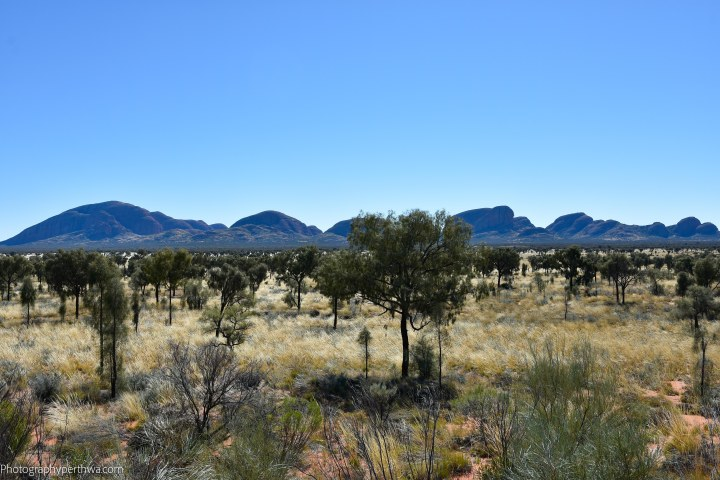 The Olgas lookout2 (1 of 1)