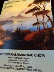 Croydon concert - 1