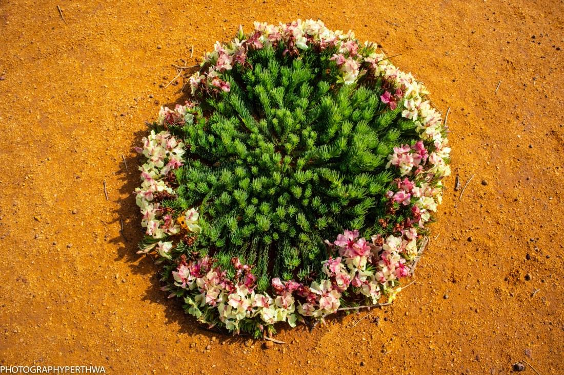 wreath flower first (1 of 1)