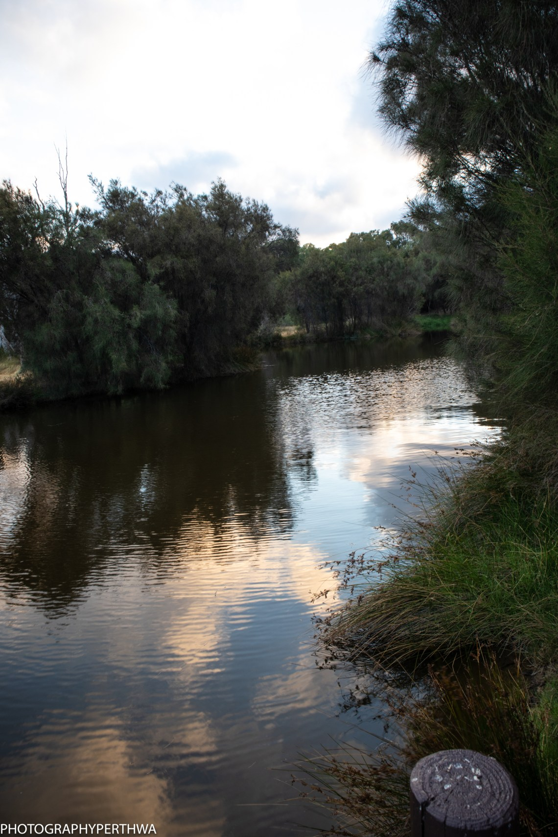 Ascot Waters 8 (1 of 1)