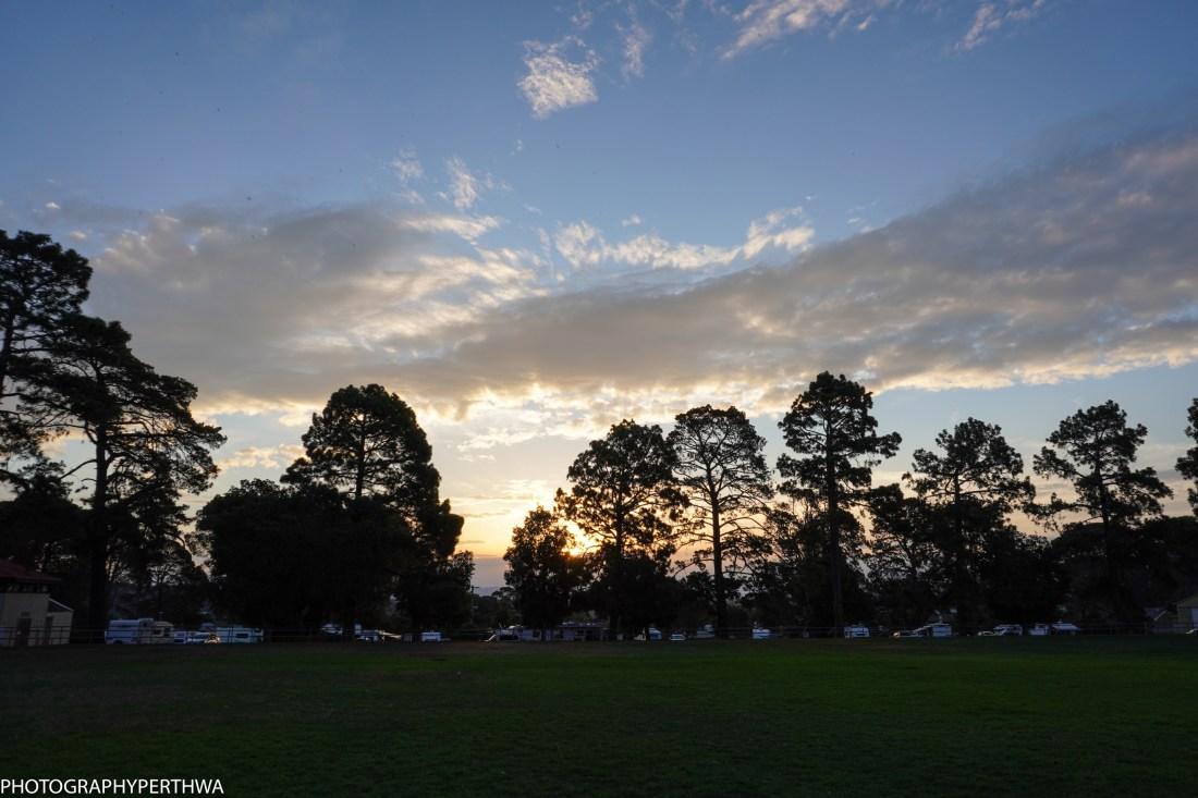 evening light (1 of 1).jpg