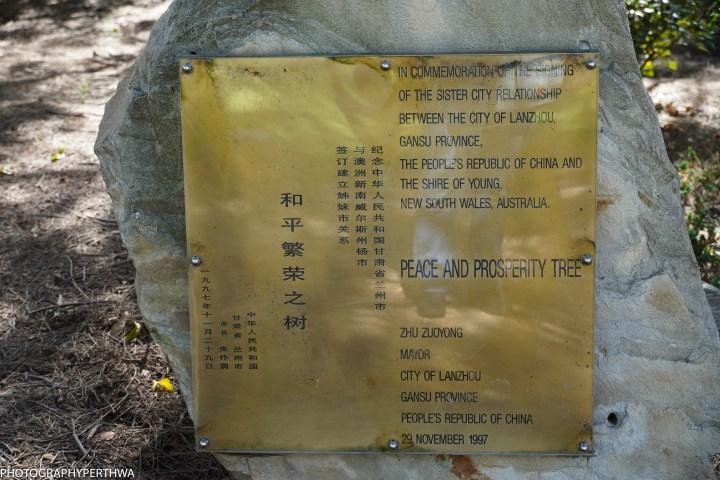 Chinese Memorial Garden4 (1 of 1).jpg