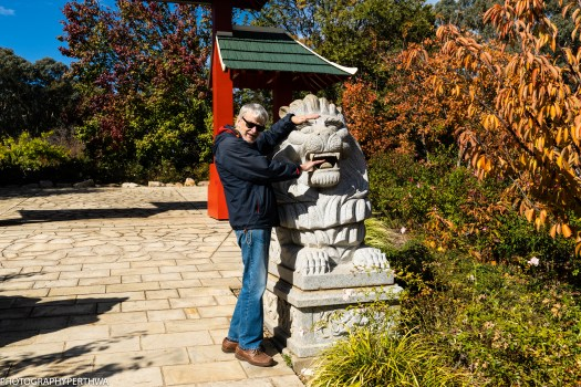 Chinese Memorial Garden6 (1 of 1).jpg