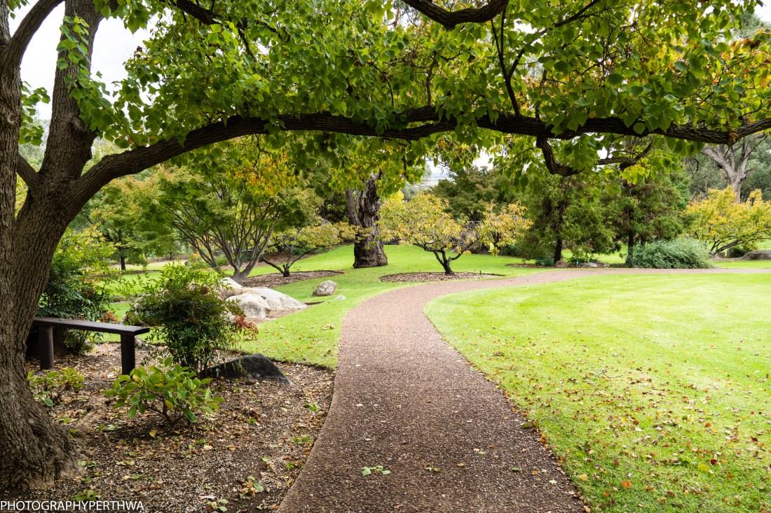 Japanese Garden 10 (1 of 1).jpg