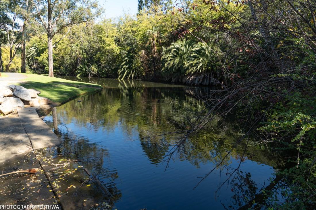 arboretum (1 of 1).jpg