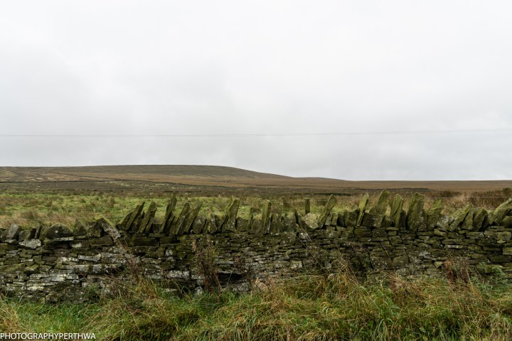 drystone wall (1 of 1)